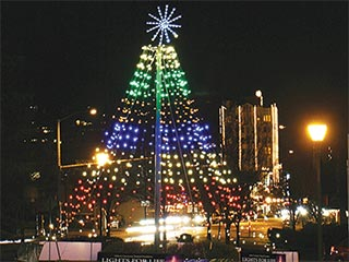 Lights for Life Tree Will Be Lit on November 24